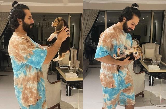 varun dhawan shares photos with pet dog joey