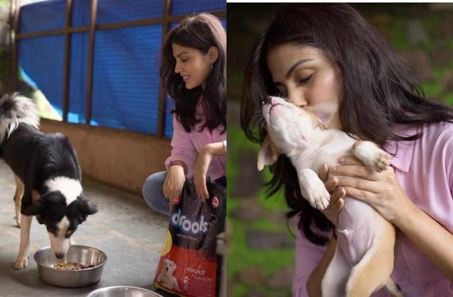 rhea chakraborty spent time with dogs and donate some food
