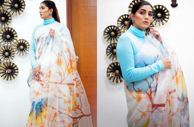 sapna choudhary shares her beautiful photos in saree look